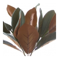 Magnolia Leaf Spray