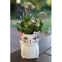 Baby Pretty Kitty planter-penholder
